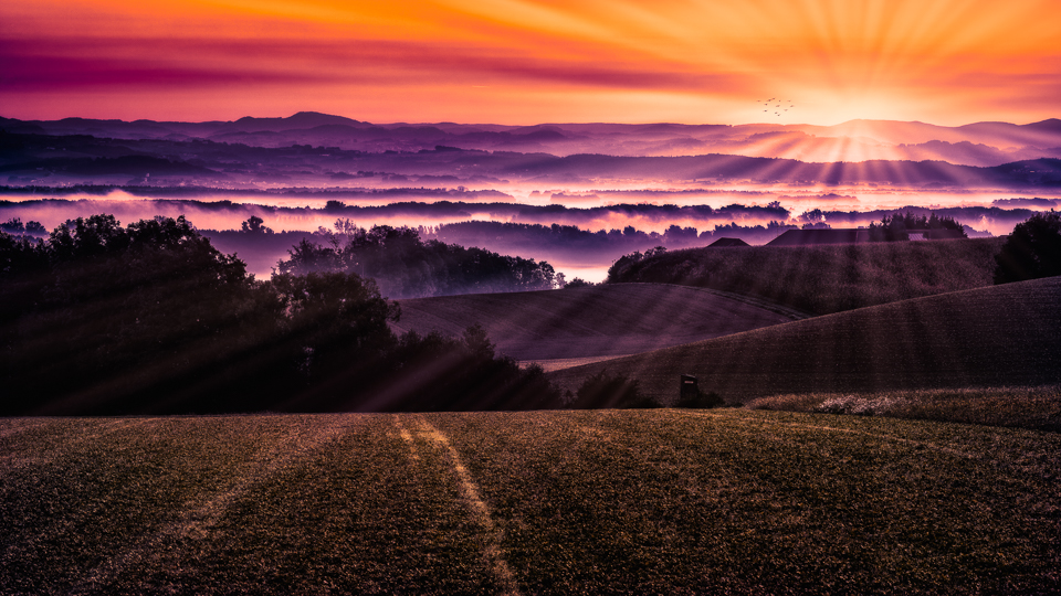 Foto Haaser - Daybreak